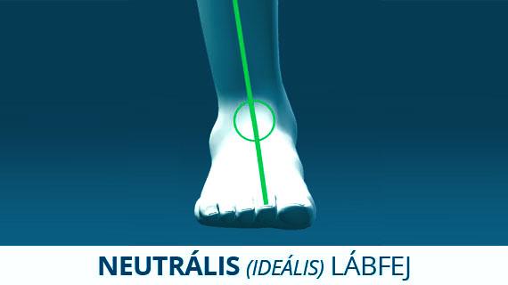 Neutrális (ideális) lábfej